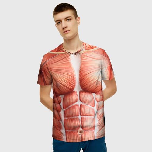 Мышцы фото