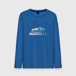 Arctic Monkeys ice