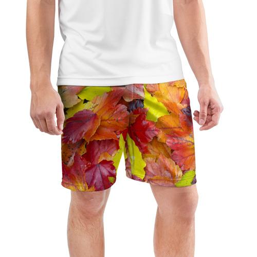 Мужские шорты 3D спортивные  Фото 03, Осень