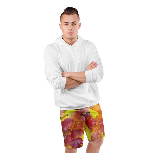 Мужские шорты 3D спортивные  Фото 05, Осень