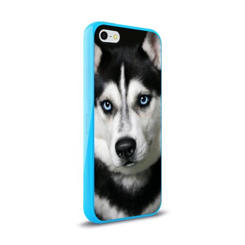 Чехол для Apple iPhone 5/5S силиконовый глянцевый  Фото 02, Хаски