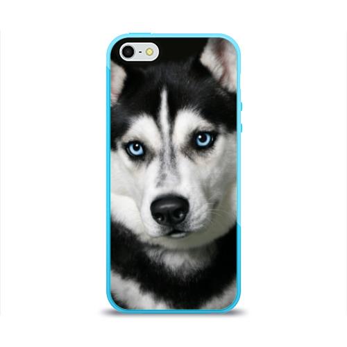 Чехол для Apple iPhone 5/5S силиконовый глянцевый  Фото 01, Хаски