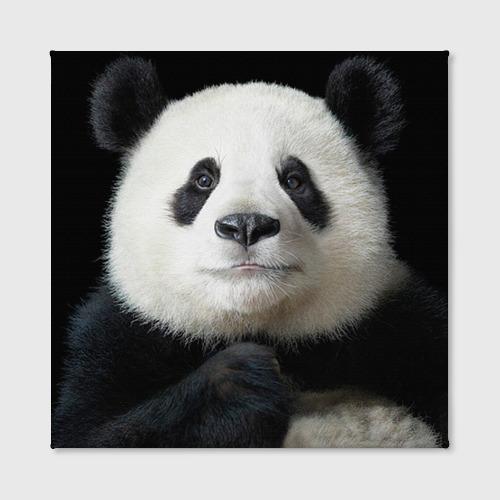 Холст квадратный  Фото 02, Панда