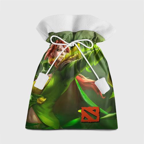 Подарочный 3D мешок Windranger