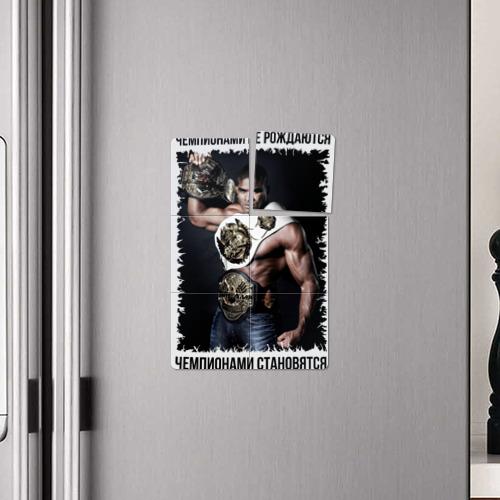 Магнитный плакат 2Х3  Фото 04, Алистар Оверим