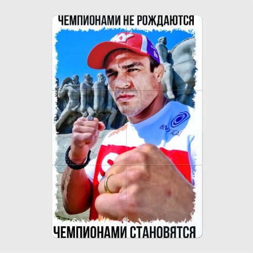 Витор Белфорт (MMA)