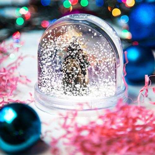 Водяной шар со снегом  Фото 04, Медведь