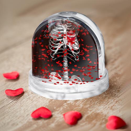 Водяной шар  Фото 04, Скелет с сердцем