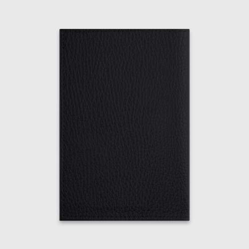 Обложка для паспорта матовая кожа  Фото 02, Череп в цепях