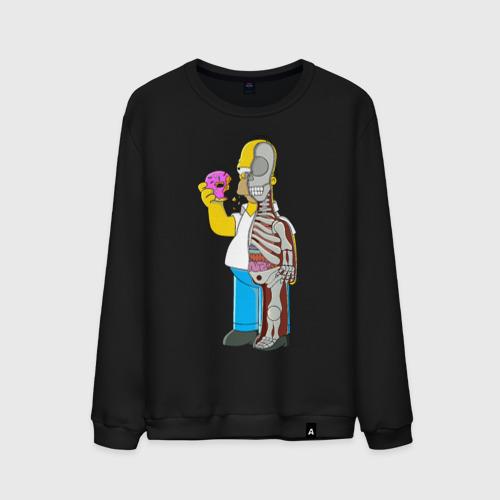 Homer Anatomy