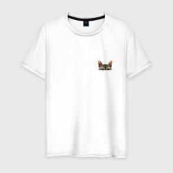 Кот в кармашке
