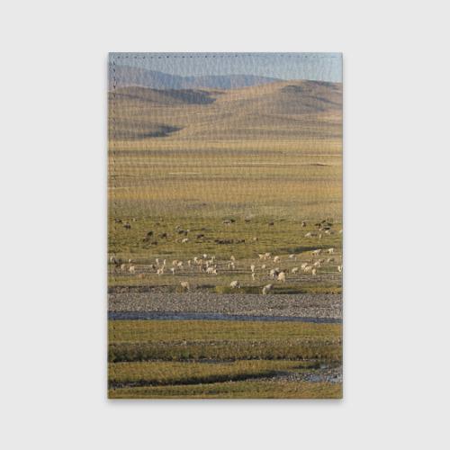 Обложка для паспорта матовая кожа  Фото 02, Долина жизни