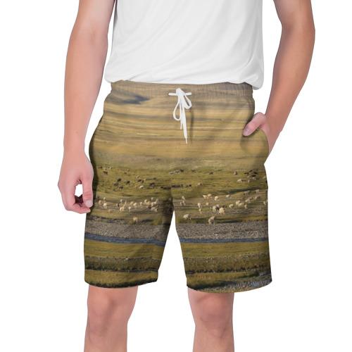 Мужские шорты 3D Долина жизни