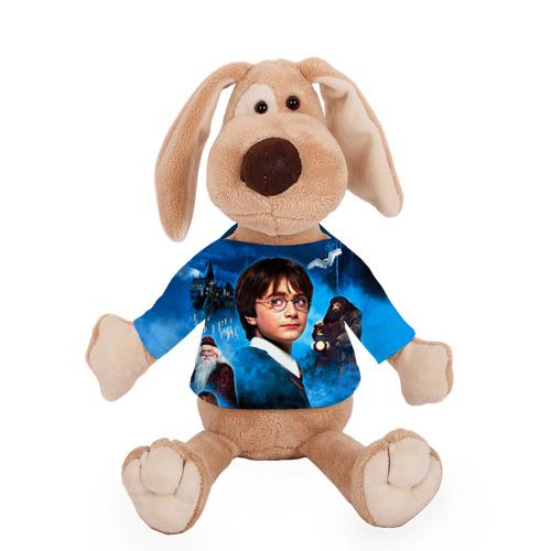 Собачка в футболке  Фото 01, Мальчик