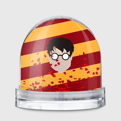 Водяной шар  Фото 01, Гарри Поттер