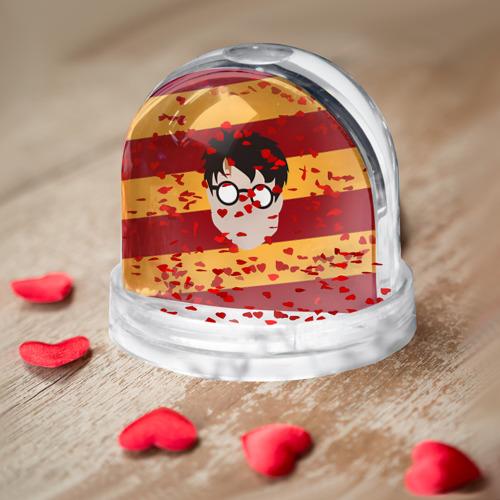 Водяной шар  Фото 04, Гарри Поттер