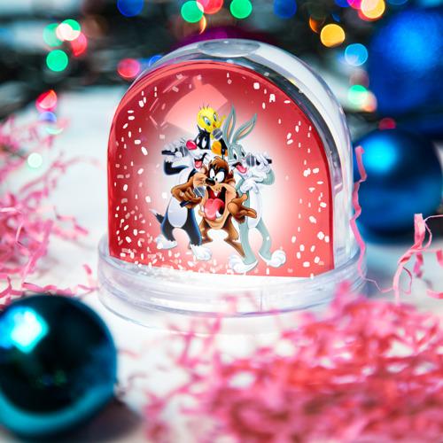 Водяной шар со снегом  Фото 03, Караоке