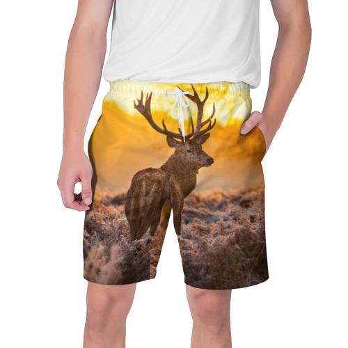 Мужские шорты 3D Обернувшийся олень