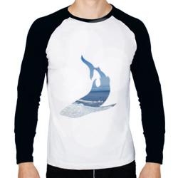 Winter shark