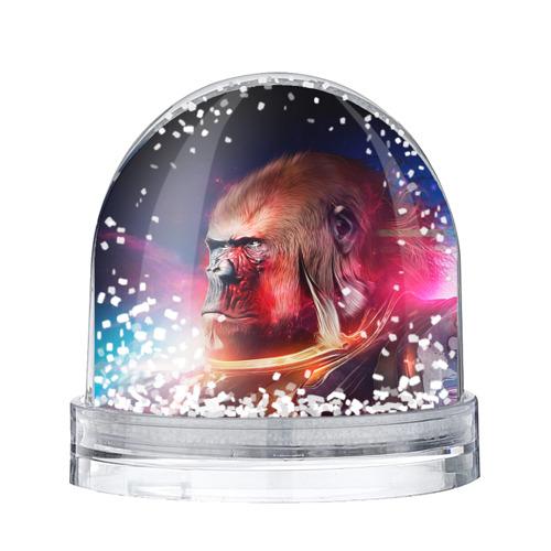 Водяной шар со снегом Обезьяна в космосе