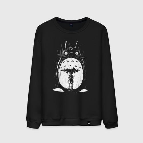 Totoro in rain