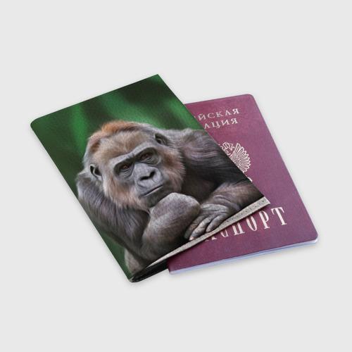 Обложка для паспорта матовая кожа  Фото 03, Обезьяна