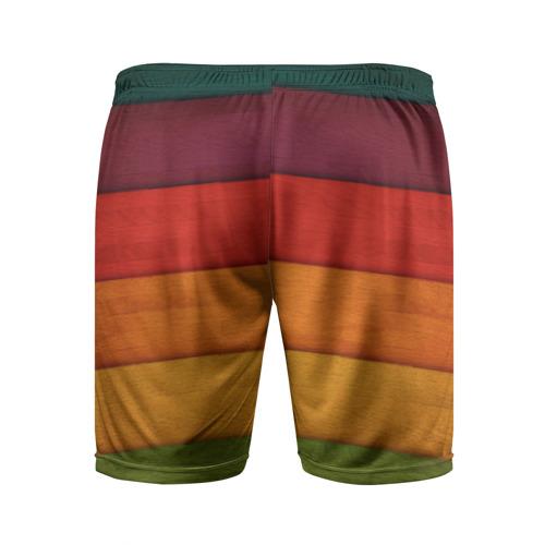 Мужские шорты 3D спортивные  Фото 02, Colored fence