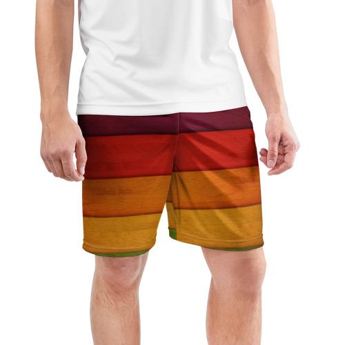 Мужские шорты 3D спортивные  Фото 03, Colored fence