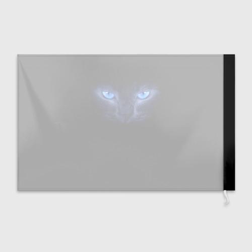 Флаг 3D Кошка с голубыми глазами Фото 01