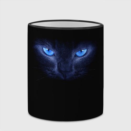 Кошка с голубыми глазами фото 2