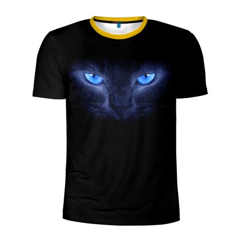 Мужская футболка 3D спортивная Кошка с голубыми глазами