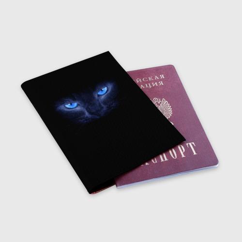 Обложка для паспорта матовая кожа Кошка с голубыми глазами Фото 01