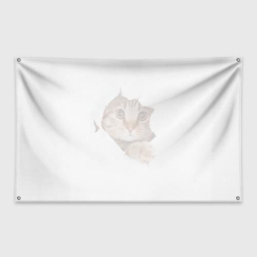 Флаг-баннер Котик Фото 01