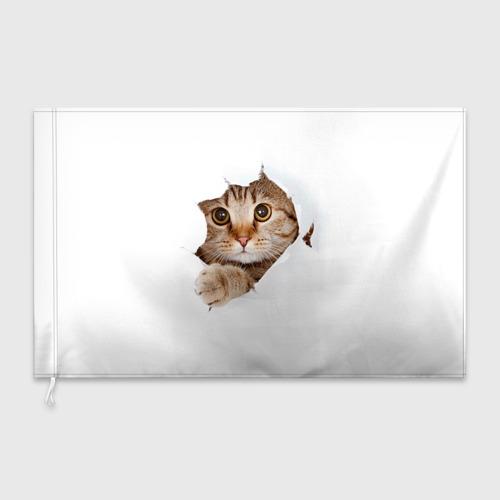 Флаг 3D Котик Фото 01
