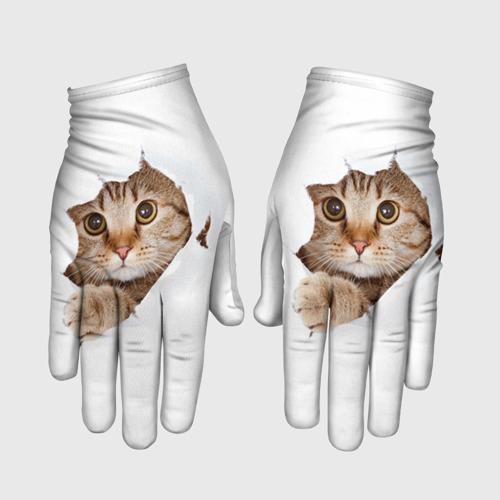 Перчатки 3D Котик Фото 01