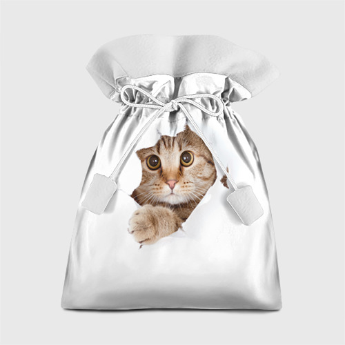 Подарочный 3D мешок Котик