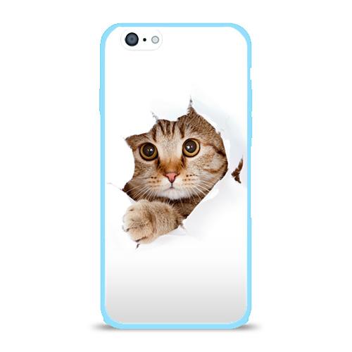 Чехол для iPhone 6/6S глянцевый Котик Фото 01