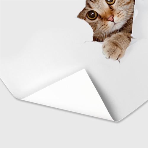 Бумага для упаковки 3D Котик Фото 01