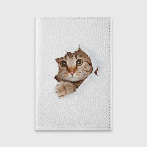 Обложка для паспорта матовая кожа Котик Фото 01