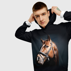 Лошадь 1