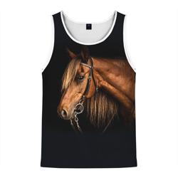 Лошадь 2
