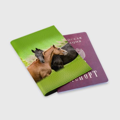 Обложка для паспорта матовая кожа  Фото 03, Лошади 2