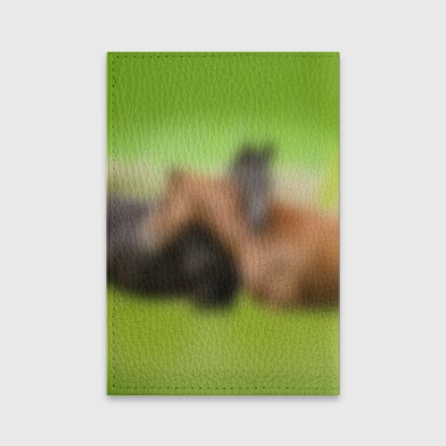Обложка для паспорта матовая кожа  Фото 02, Лошади 2