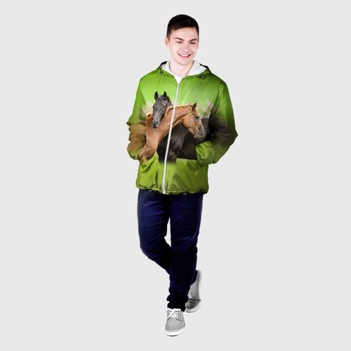 Мужская куртка 3D  Фото 03, Лошади 2
