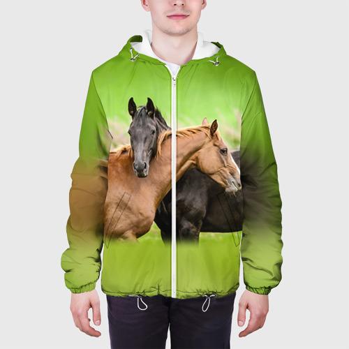 Мужская куртка 3D  Фото 04, Лошади 2