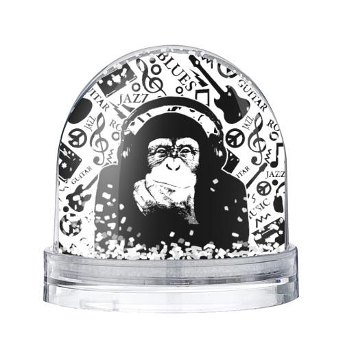 Водяной шар со снегом  Фото 01, Шимпанзе в наушниках