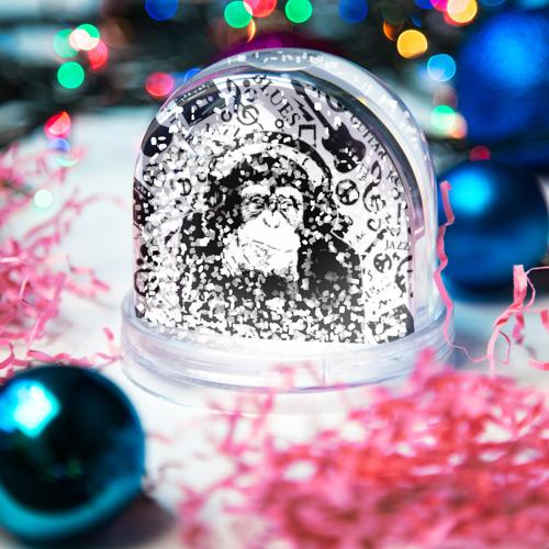 Водяной шар со снегом  Фото 04, Шимпанзе в наушниках
