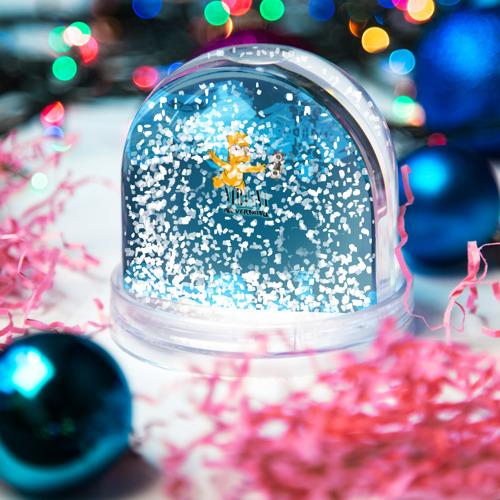 Водяной шар со снегом  Фото 04, Nirvana & Simpson