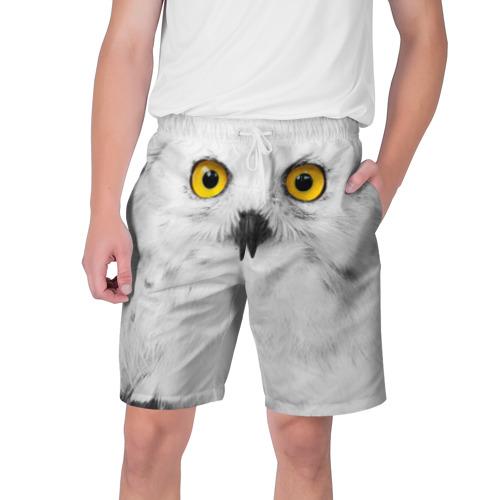 Мужские шорты 3D Сова 2