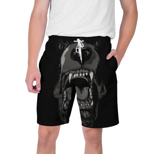 Мужские шорты 3D Grizzly bear
